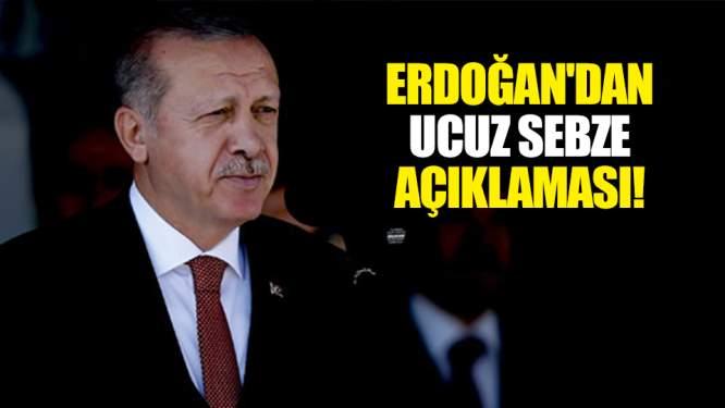 Cumhurbaşkanı Erdoğan'dan ucuz sebze açıklaması!