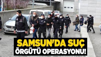 Samsun'da suç örgütü operasyonu!