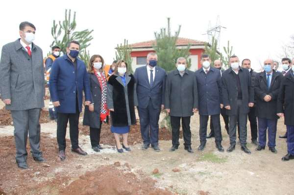 Gaziantepte 330 adet karaçam ağacı toprakla buluştu