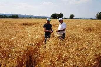Çerçi: 'Ürünlerimizi tam döneminde hasat edelim'