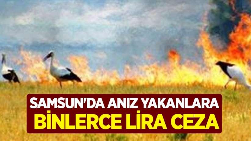 Samsun'da anız yakanlara binlerce lira ceza