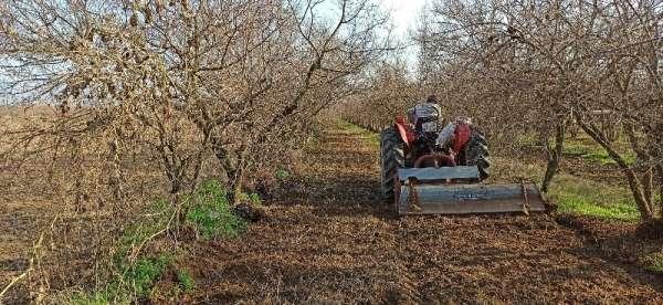 İzmirde kısıtlamaya rağmen tarlalarda üretim devam etti