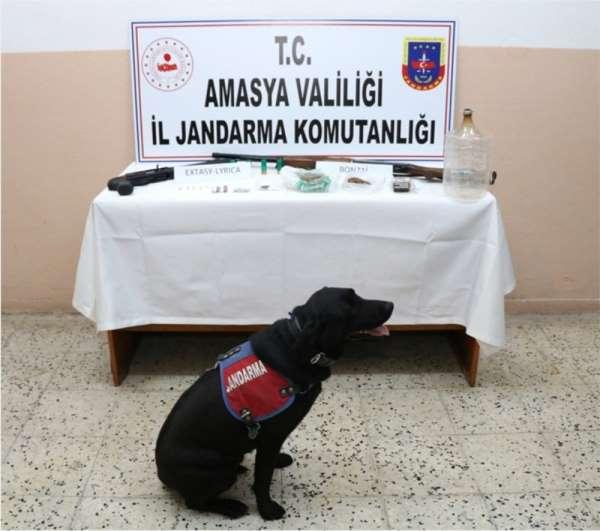 Amasya'da uyuşturucu ve uyarıcı madde ele geçirildi
