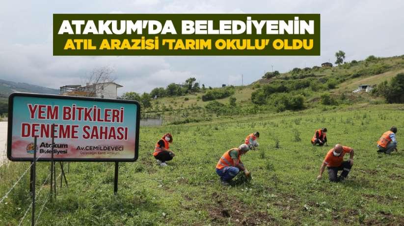Atakum'da belediyenin atıl arazisi 'tarım okulu' oldu
