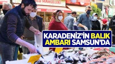 Karadeniz'in balık ambarı Samsun'da