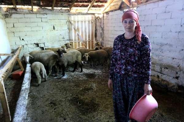 İki üniversite bitirip 4 dil konuşan Rus kadın Bursa'da hayvancılık yapıyor