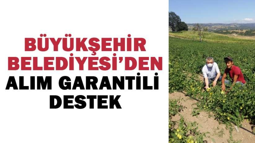 Samsun Büyükşehir Belediyesi'den alım garantili destek