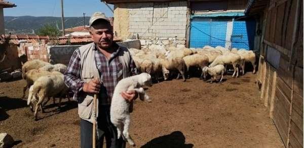 Ispartada 272 köylüye 7 milyon 134 bin TL Orköy kredi desteği sağlandı
