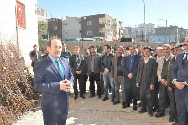 Şırnak'ta çiftçilere 27 bin 700 adet meyve fidanı fidan dağıtıldı