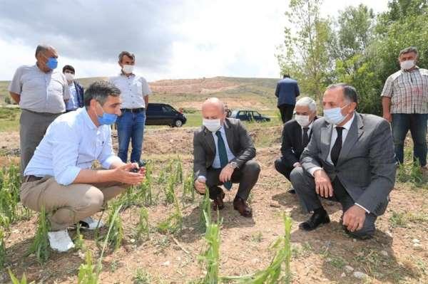 Vali Varol: 'Devletimiz tüm imkanları ile zarar gören çiftçilerimizin yanındadır