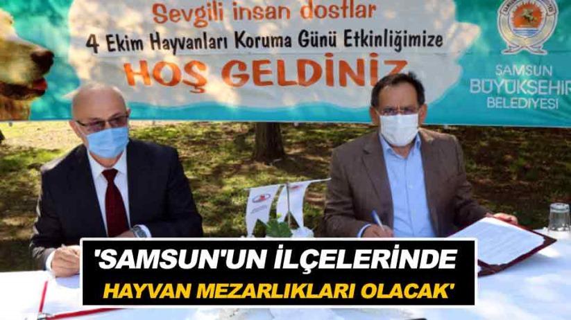 'Samsun'un ilçelerinde hayvan mezarlıkları olacak'