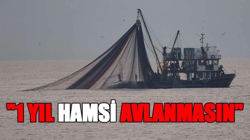 'Karadeniz'de 1 yıl hamsi avlanmasın' önerisi
