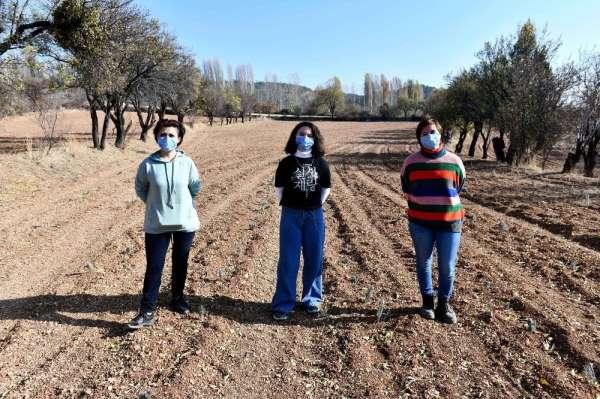 Ankara Büyükşehir Belediyesi boş arazileri tarıma kazandırıyor