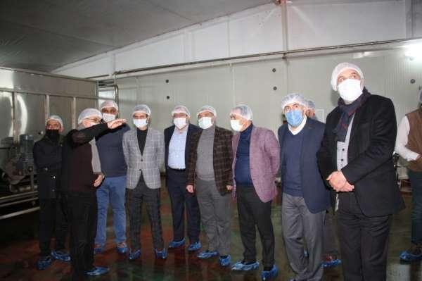 Dut pekmezi fabrikalarını incelediler