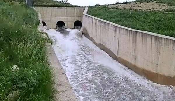 Çeltik üreticileri için ilave su temin ediliyor