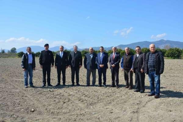 Muğlalı çiftçiye 'pikan cevizi' desteği