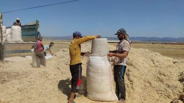 İslahiye'de saman satışı başladı