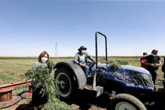 Şahin Nizip ve Karkamış'ta hasat yapan çiftçiyle buluştu
