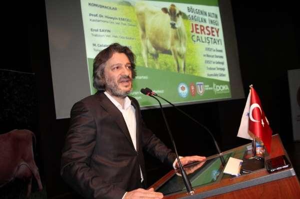 Trabzon'da 'Bölgenin altın sağılan ineği Jersey Çalıştayı' düzenlendi