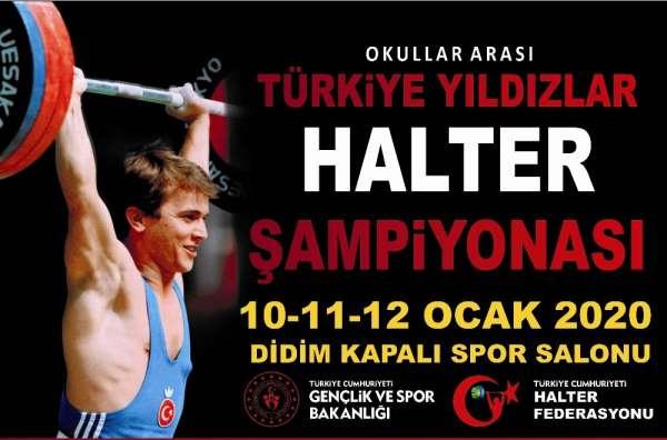 Halter Türkiye Şampiyonası Didim'de yapılacak