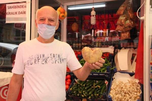 Samsun'da patates aşka geldi