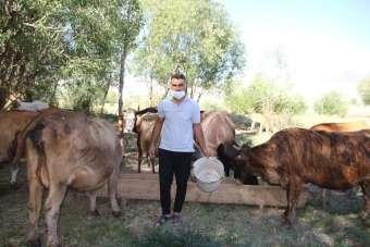 Varto'da genç çiftçi, kiraladığı ahır satılınca hayvanları ile birlikte dışarıda