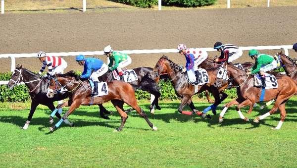 At yarışlarında heyecan yarın başlayacak