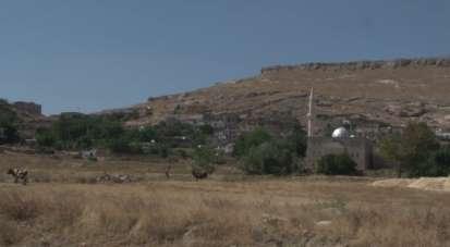 Terör örgütü PKK'nın Cevizli saldırısı unutulmuyor