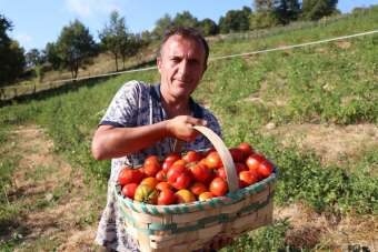 Doğal domateslerden elde ettiği 2 ton salçayı ihaleyle satışa çıkartacak