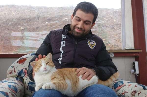 Annesini kazada kaybeden yavru kediye polisler sahip çıktı