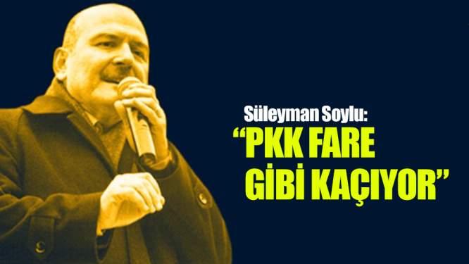 Süleyman Soylu: 'PKK fare gibi kaçıyor'
