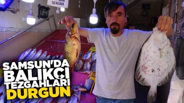 Samsun'da balıkçılarda durgunluk