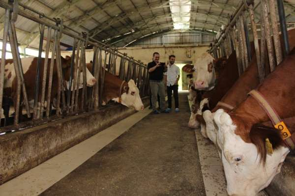AB Bilginin desteklediği hayvancılık tesislerine ziyaret