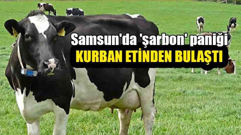 Samsun'da kurban etinden 'şarbon' bulaştı