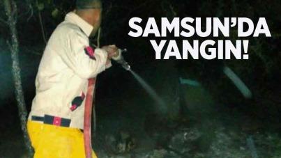 Samsun'da yangın
