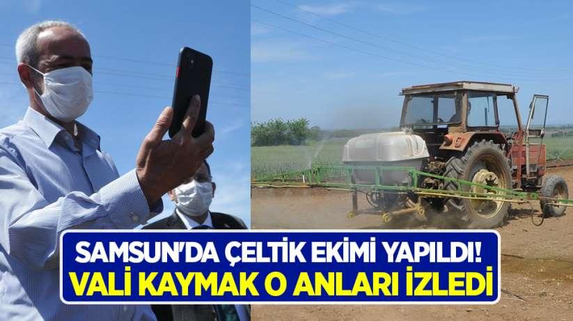 Samsun'da çeltik ekimi yapıldı! Vali Kaymak o anları izledi