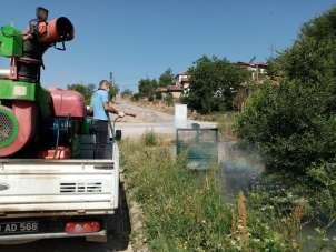 Tokat'ta, larva ve haşerelere karşı ilaçlama