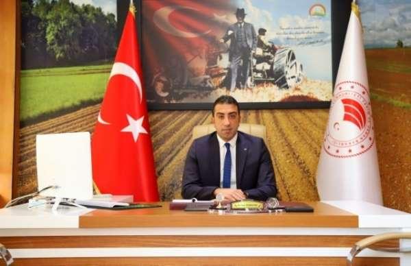 Bingöl Tarım ve Orman İl Müdürü Bahadır, 2021 yılının ilk 6 ayında 51 milyon TL tarımsal destek verildi