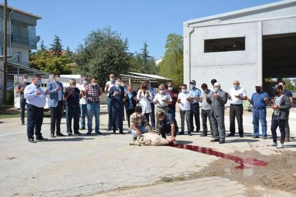 Beylikova'da hizmet araçları ve yatırımların kazasız belasız bitmesi için kurban