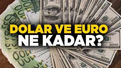 11 Ocak Cumartesi Samsun'da Dolar ve Euro ne kadar?
