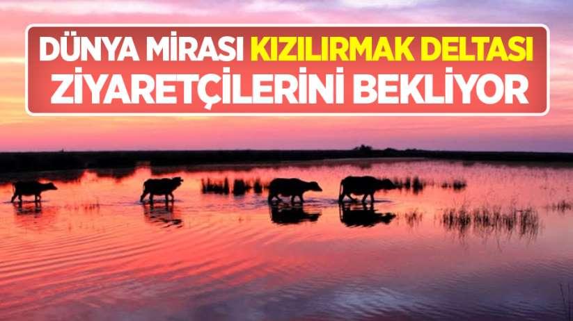 Dünya mirası Kızılırmak Deltası ziyaretçilerini bekliyor