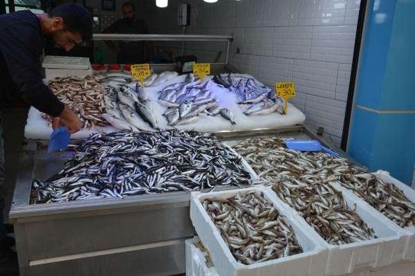 Balıkçı esnafı satışlardan memnun değil