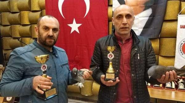 Samsun'da güvercin güzellik yarışması düzenlendi