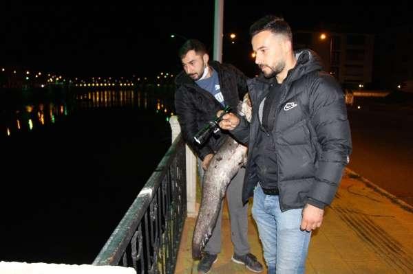 Polis 'zehirli olabilir' diye uyardı ama onlar fenerle aydınlatıp balık tuttu