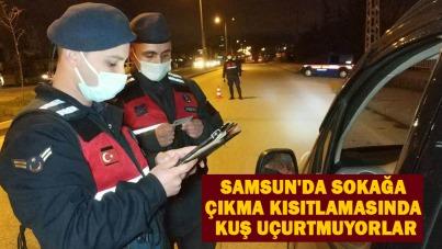 Samsun'da sokağa çıkma kısıtlamasında kuş uçurtmuyorlar