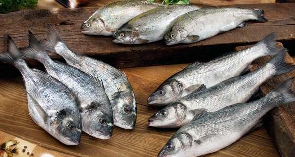 Pandemi döneminde Muğladan 410 milyon dolarlık balık ihracatı