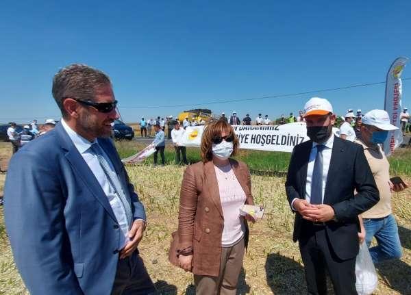 TARSİM, Tekirdağ ilinde kanola ve buğday hasadına katıldı