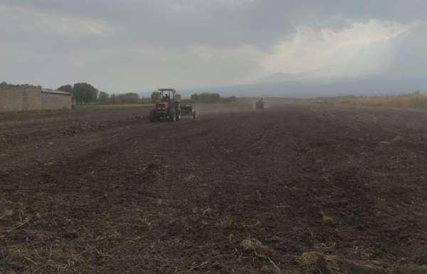 Iğdır'da yüksek verimli buğday ekimi yapıldı