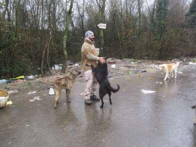 Eğitmen Göktan Eker, köpek saldırılarından korunma yöntemlerini anlattı