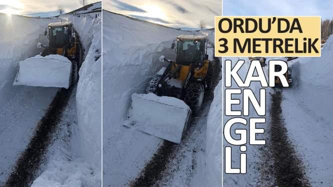 3 Metrelik Kar Engeli